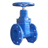 BS5163 Resilient Seated Gate Valve