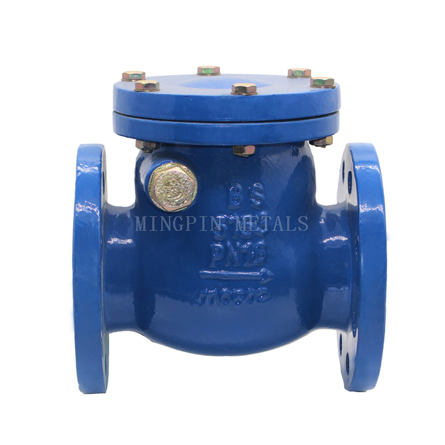 BS5153 / EN12334 Swing Check Valve