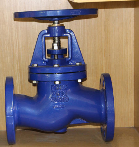 Features of globe valve